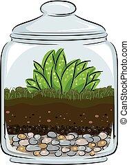 illustration, botanique, terrarium