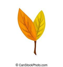 illustration., coloré, leaf., arbre, automne, vecteur