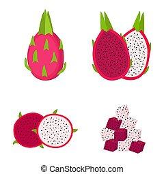 illustration, fruit, entier, vecteur, tranches, fond, blanc, dragon, moitié