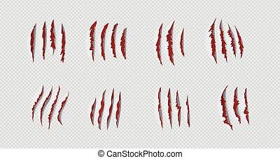 illustration, griffe, vecteur, réaliste, ensemble, marks., scratches., transparent, rouges, arrière-plan.
