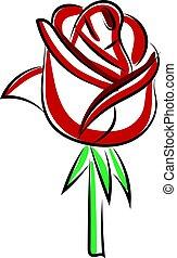 illustration, rose rouge, blanc, vecteur, arrière-plan.