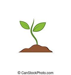 illustration, vecteur, icône, plante
