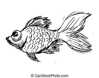 illustration, vecteur, poisson rouge