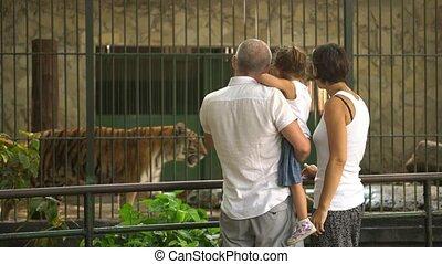 image, smartphone, famille, prendre, zoo, grand-mère, heureux