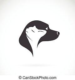 image, vecteur, chat, fond blanc, chien