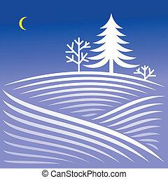 impeccable, paysage hiver, nuit