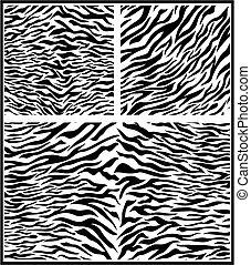 impression, zebra, animal