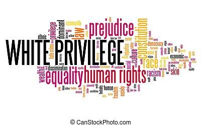 inégalité, racial