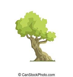 incliné, arbre, élément, exotique, jungle, feuillage, paysage