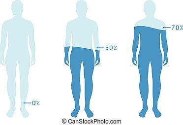 infographic, body., projection, niveau, illustration, eau, balance., vecteur, humain, pourcentage