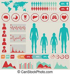 infographic, ensemble, illustration., elements., diagrammes médicaux, vecteur, autre
