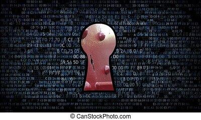 information, hacher, data., voler