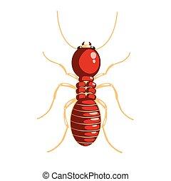 insecte, caractère, termite, coloré, dessin animé