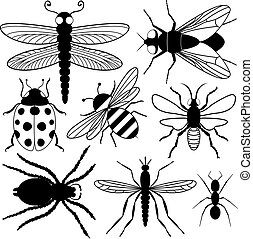 insecte, huit, silhouettes