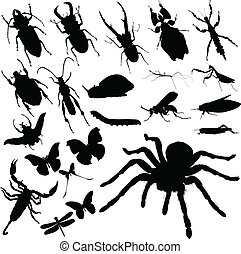 insecte, vecteur, groupe, silhouettes