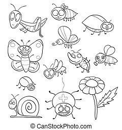 insectes, livre coloration