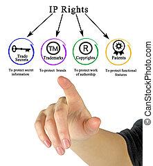 ip, comment, droits, protéger