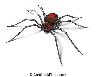 isolated., :, noir, araignés, widow.