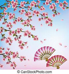 japonaise, -, vecteur, fleur, cerise, fond, beau, ouvert, fans., arbre, sakura, décoratif, illustration, deux