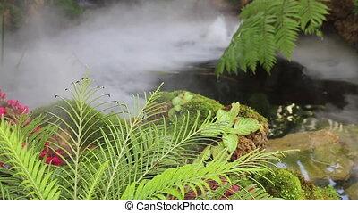 jardin eau, maison, vapeur