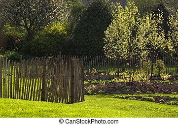 jardin, printemps