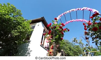 jardin, voûte, rose