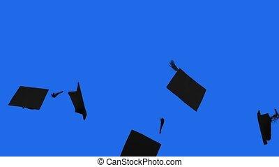 jeté, remise de diplomes, fond, mouvement, air, casquettes, lent, écran, studio, bleu