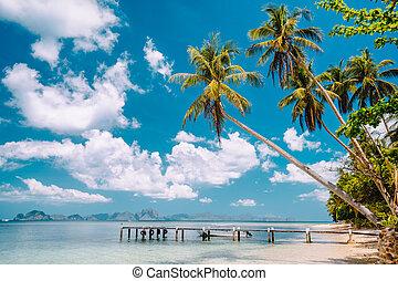jetée, plage, exotique, ciel, arbres, blanc, jetée, nuages, exotique, bleu, paume