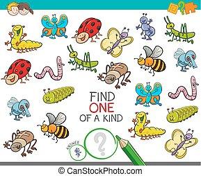 jeu, espèce, animaux, insecte, une