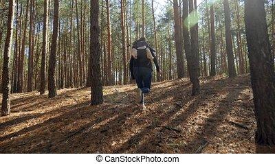 jeune, après, métrage, pov, courir loin, forêt, femme, sac à dos, chasser, 4k, maniaque