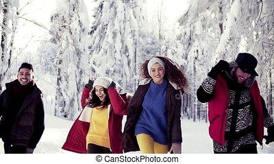 jeune, gai, amis, dehors, promenade, hiver, forest., groupe, neige