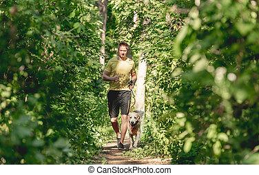 jogging, chien, bois, homme