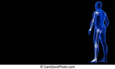 jointure humaine, côté, bleu, vue., tourner, boucle, anatomie, arrière-plan animation, seamless, -, 3d, douleur, balayage, corps, render, noir
