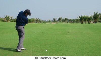 joueur golf professionnel, jouer, homme
