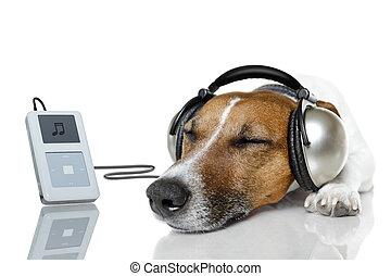 joueur, musique, chien, écouter