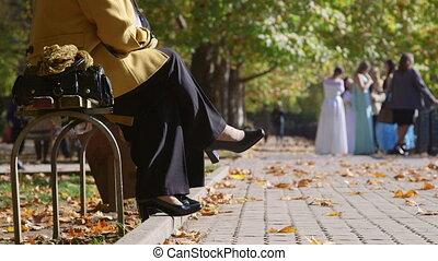 jouir de, gens ville, parc, jour automne