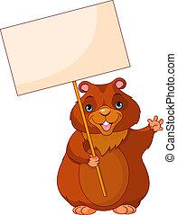 jour, signe, marmotte amérique