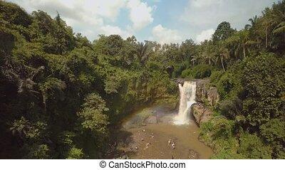 jungle, bali, 7, océan, chute eau, indien, île
