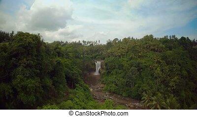 jungle, bali, océan, 1, chute eau, indien, île