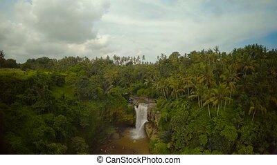 jungle, bali, océan, chute eau, 2, indien, île
