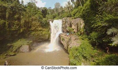 jungle, bali, océan, chute eau, indien, île, 6