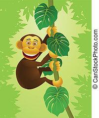 jungle, chimpanzé, dessin animé