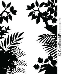 jungle, silhouette