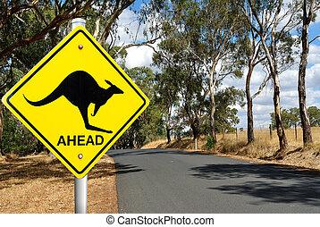 kangourou, avertissement, panneaux signalisations