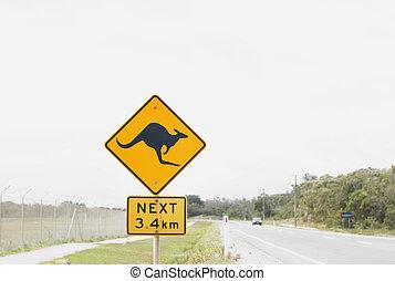 kangourou, avertissement, signe., route