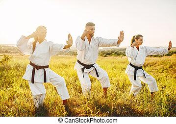 karaté, formation, instructeur, compétence, femme