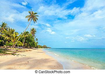 koh samui, por, ensoleillé, coup, thailand., plage, jour