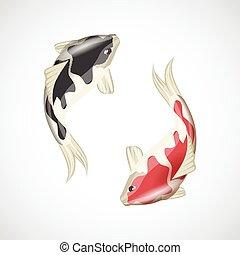 koi pêchent, illustration