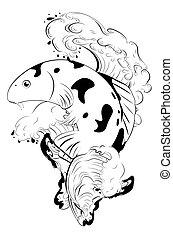 koi, poisson blanc, noir