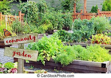 légume, aromate, garden.